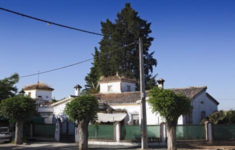 Grupo de viviendas del barrio del Carbonal. Villanueva del Río y Minas, Sevilla. Autor: JCC. Fuente: Minas de Sierra Morena. Los Colores de la Tierra. 2013